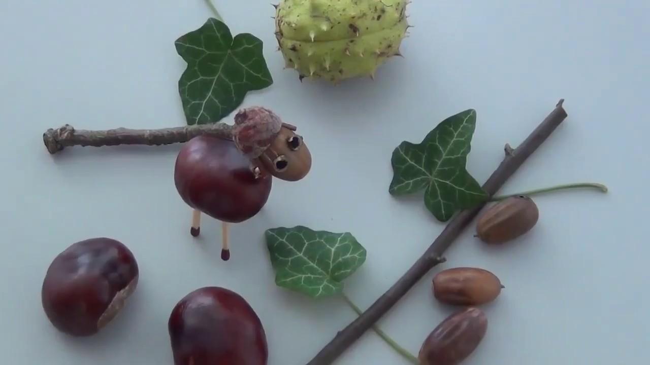 Basteln Im Herbst So Macht Ihr Ein Kastanien Schaf Youtube