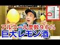 【激ウマ】巨大化したレモンとスピリタスを使ったイタリア発祥リモンチェッロが美味…