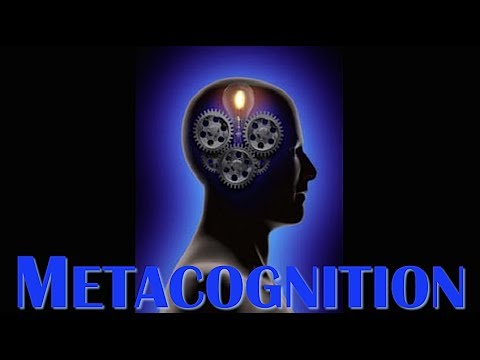 The Power of Metacognition