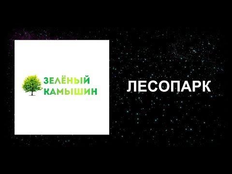 """""""ЗЕЛЁНЫЙ КАМЫШИН"""": ЛЕСОПАРК"""