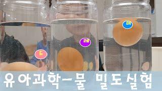 집에서 하기 쉬운 과학놀이, 계란실험, 밀도알아보기