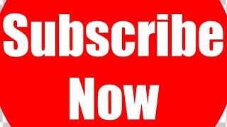 BLACKY☆ V_S ☆BROWNY #PET ANIMAL FIGHT TIGHTLY