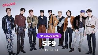 [Replay][I'm Celuv] SF9(에스에프나인), 어딜 가나 눈에 띄는~ (Celuv.TV)