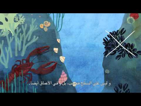 Blue Ocean - English with arabic subtitles