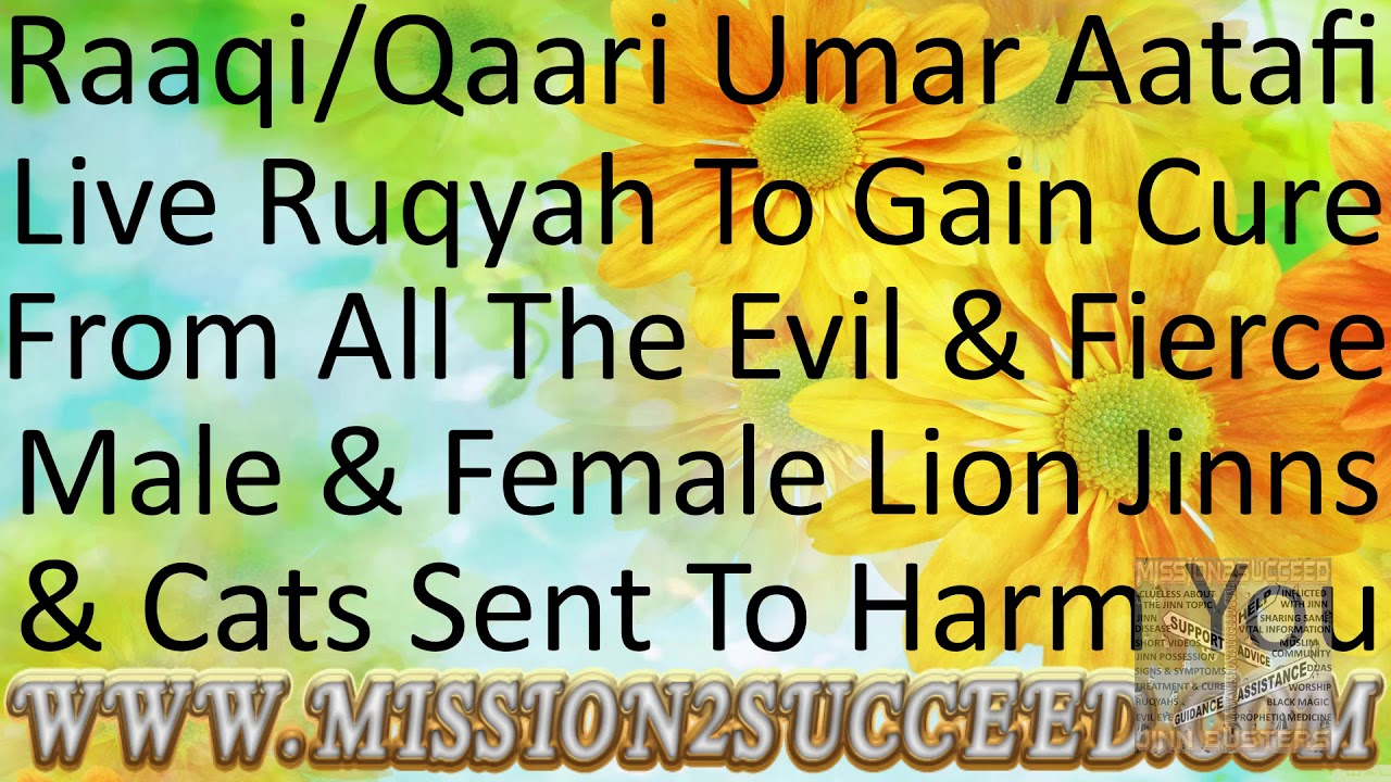 GAIN CURE FROM ALL THE EVIL & FIERCE LION JINNS AND CATS SENT TO HARM YOUR  BODY RAAQI UMAR AATAFI