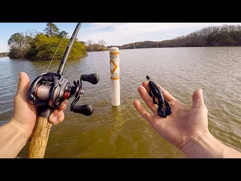 The Deepest Lake I've Ever Fished || 50 State Fishing Tour (Lake Lanier GA)