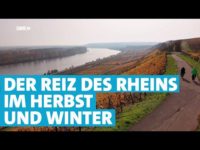 Herbst und Winter am reizvollen Rhein zwischen Mainz und Worms