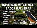 Masteran Murai Batu Gacor Full Isian Mewah  Mp3 - Mp4 Download