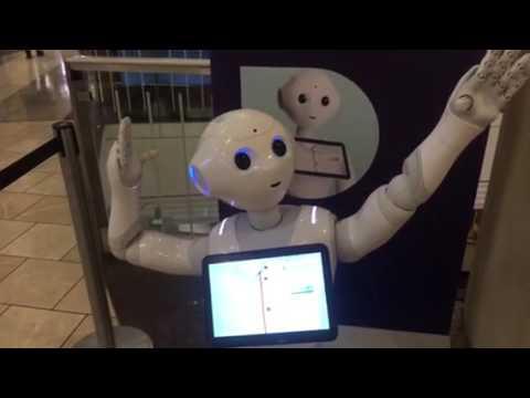 Meet Pepper Robot At Westfield Village Shopping Center