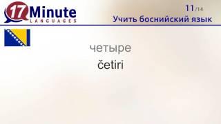 Учить боснийский язык (бесплатный видеоурок)