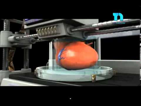 Impresi n de rganos ya es posible imprimir ri n en 3d for Videos de impresoras 3d