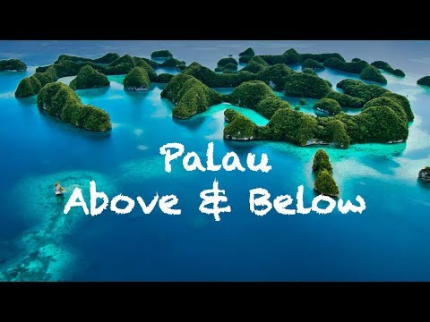 Palau Above and Below - DJI Mavic Pro & GoPro - Palau Siren Liveaboard