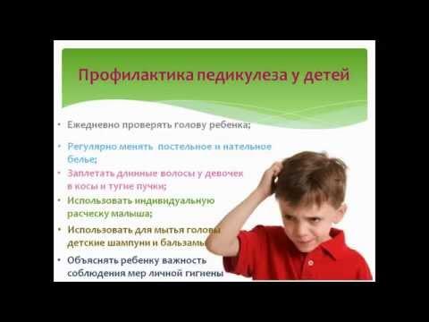 Симптомы и признаки вшей -