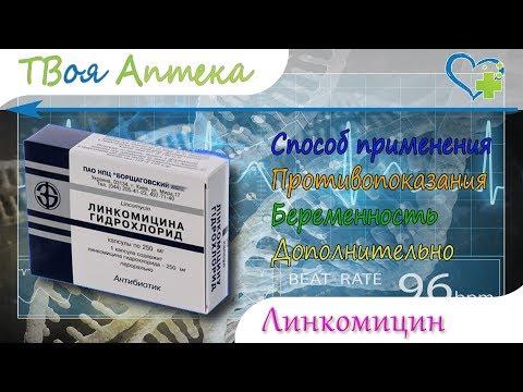 Линкомицин капсулы - показания (видео инструкция) описание, отзывы
