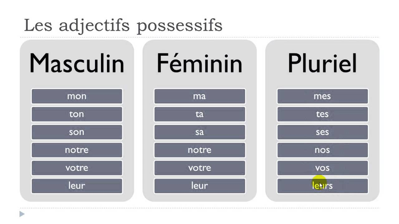 French possessive adjectives - Simplefrenchwords.com