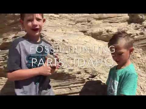 Paris Idaho Fossil Hunt