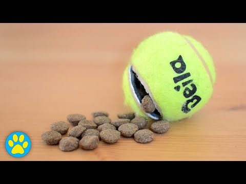 diy-tennis-ball-treat-toy-for-dogs