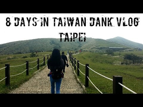 8 DAYS IN TAIWAN 2017 dank vlog (3/3) - Taipei