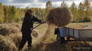 Надо ТОРОПИТЬСЯ 🏃 Что делать с САЖЕНЦАМИ 🌱 КУПИТЬ козу 🐐 Семья в деревне