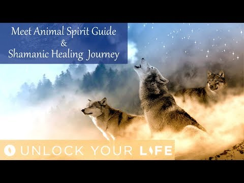 Meet Your Animal Spirit Guide Hypnosis and Shamanic Healing Journey for Positive Energy (Meditation)