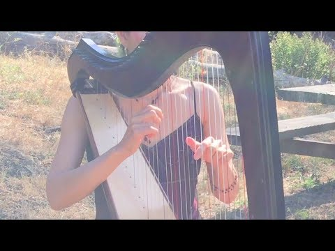 "the-perfect-wedding-song-|-harp-cover-of-ed-sheeran's-""perfect""---susansharpsongs"