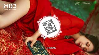 玺晨 - 青玉案 Lyrics「 每日歌曲推荐 #232」#歌曲的歌词