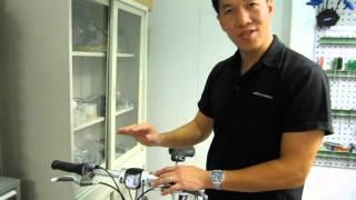 BioLogic Joule II Dynamo Hub Wheel