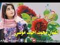 الفنان محمد احمد موسي/انساني غشاش