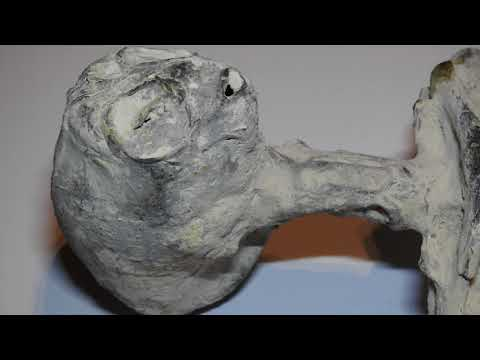 The Tracie Austin Show - The Mysterious Mummies Of Peru Part 1