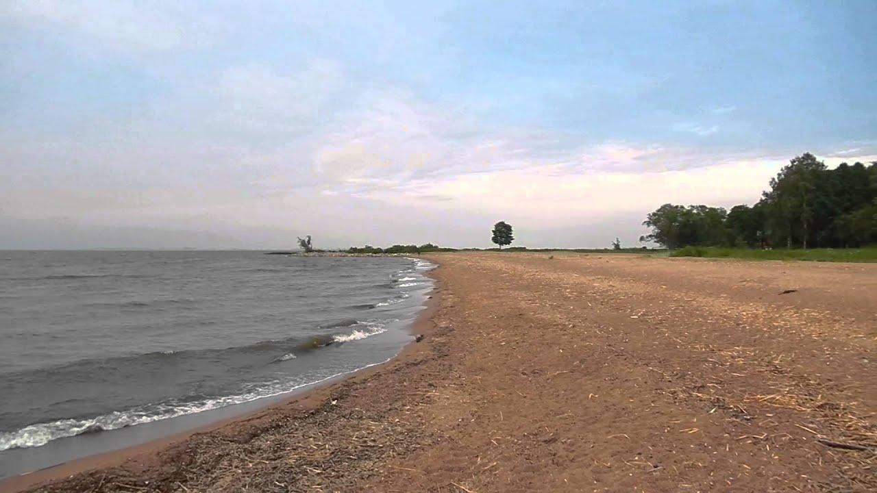 петергоф финский залив фото