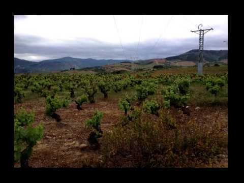 Walking the Camino de Santiago,  2012: Martina and Andreas