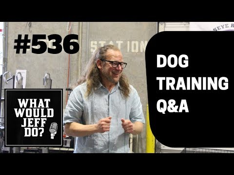 Dog won't get in the Car | Socializing a puppy | What Would Jeff Do? Dog Training Q & A #536