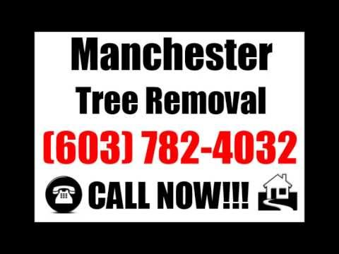 Tree Pruning Manchester NH | (603) 782-4032 | Emergency | Tree | Branch | Pruning | Manchester | NH