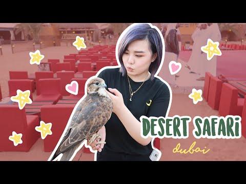 Meeting a Falcon on the Desert Safari | Dubai | 2019 | Sarah Sinclair