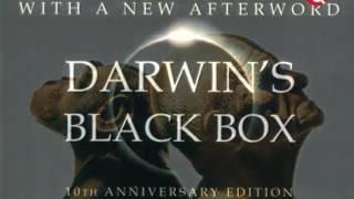 Фото Книга Бытия против Дарвина