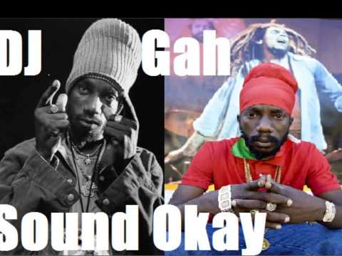 SIZZLA KALONJI - Hardcore Hustler,ASSASIN -Rebellious Nature + Arise & Shine Riddim -2013