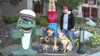 Puppy In Training Tv - Ep10 - Puppy Training In The Snow And Bass Pro Shop
