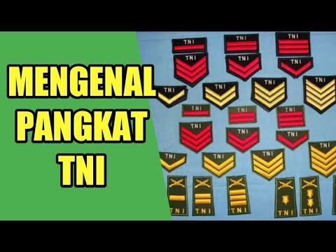 Download Urutan Pangkat TNI dari Prada sampai Jendral Besar