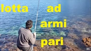 PECHE EN MER DAURADE PESCA ORATA BIG PESCA MAR BREAM FISHING WITH BAITS WORM SEA COME PESCARE ORATE