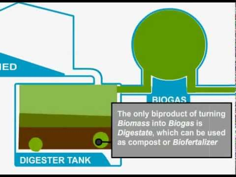 Biomass Gasification Youtube