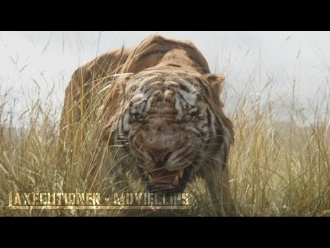 The Jungle Book |2016| All Fight Scenes...