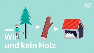 Holz-Knappheit: Warum ist das Holz knapp