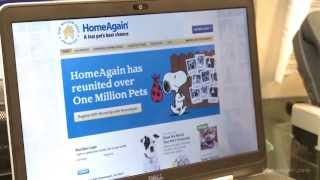 Protect Your Pets with HomeAgain