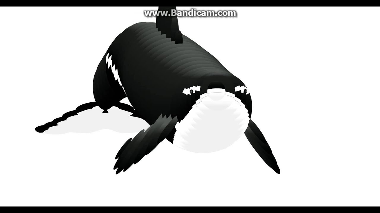 orca mouse follower get low youtube