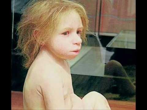 Neandertal el regreso mediante ADN