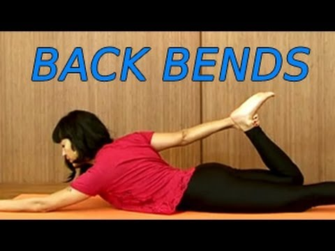yoga for beginners  back bends  youtube