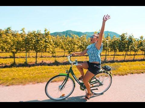 Austria Winery Tour