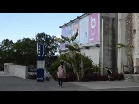 BRISBANE'S LATTE SET - Brisbane Powerhouse