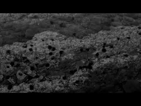 Soulful Howl Trailer