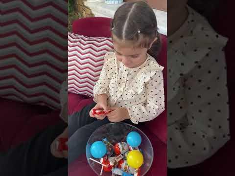 Toybox Cosbybox Toptikbox Kinder Sürpriz Yumurta Kiddy Ülker Smartt Toto Cubebox Maşa ile Koca Ayı